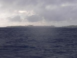 isla isabela, galapagos